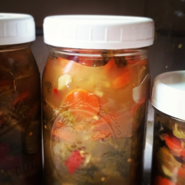 A batch of kimchi, ready to move into the fridge for cold storage and spicy snacking!